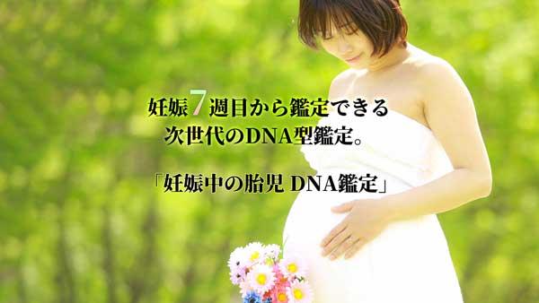 胎児性別DNA鑑定サービスページへ