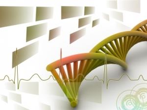 DNA signal