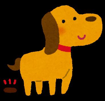 dog_poo