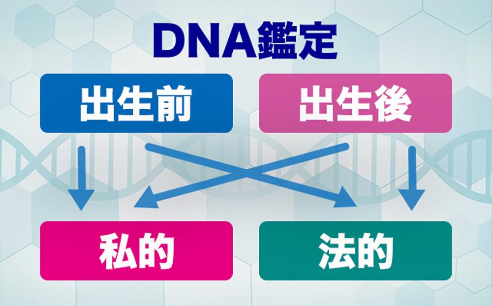 DNA親子鑑定と子供の認知
