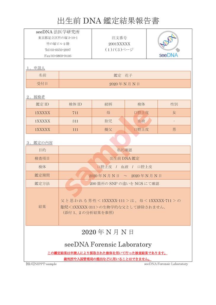 出生前DNA鑑定 報告書サンプル【1ページ目】