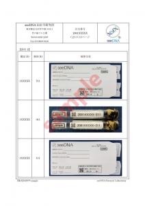 出生前DNA鑑定 報告書サンプル【2ページ目】