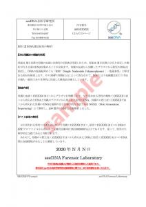 出生前DNA鑑定 報告書サンプル【3ページ目】